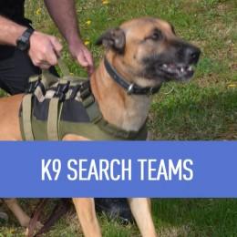 k9-search-1