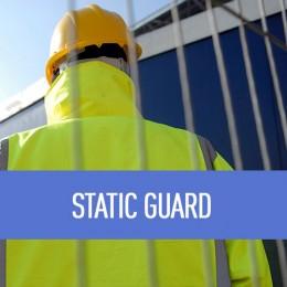 static-guard-1